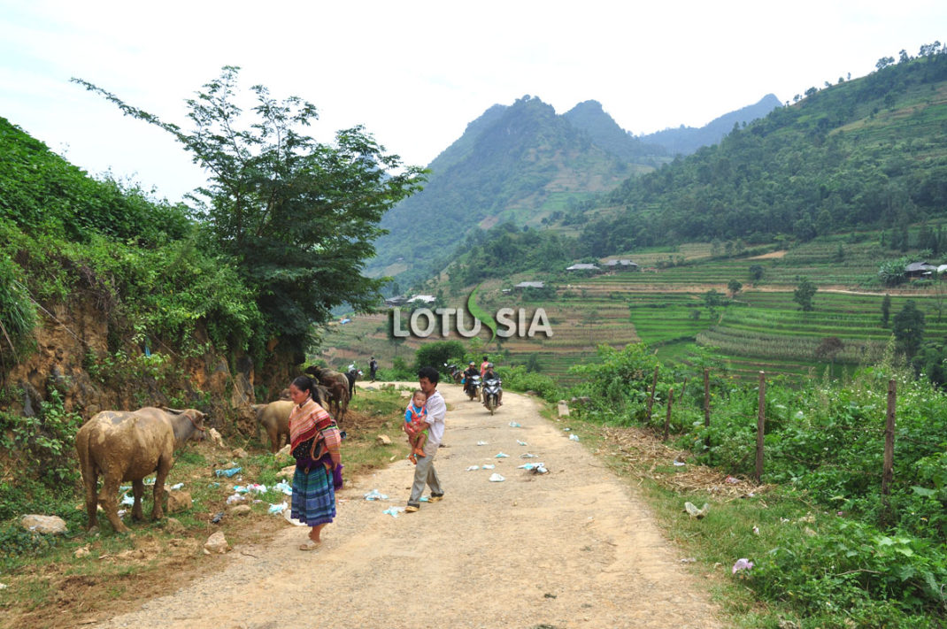 Sapa Bac Ha Market Day Tour