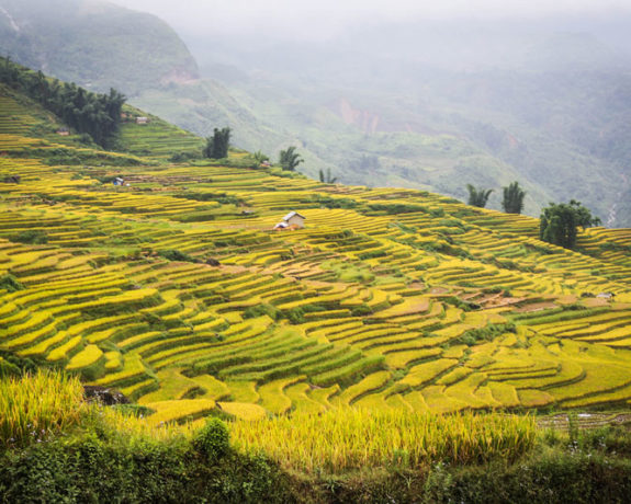 Off The Beaten Path Vietnam North Trekking Tour