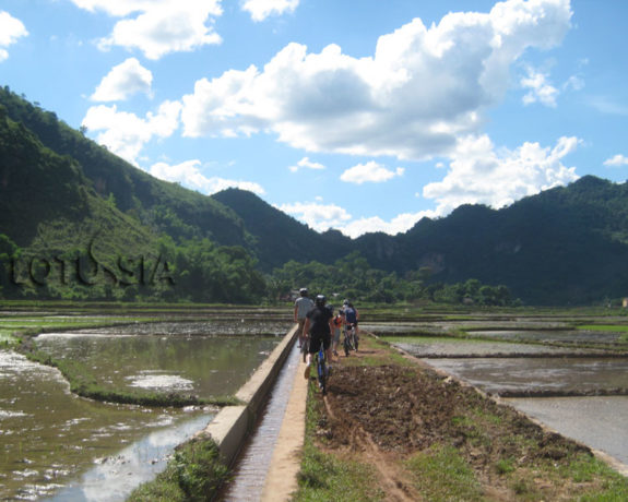 Best 3 Day Biking North Vietnam Mai Chau Pu Luong