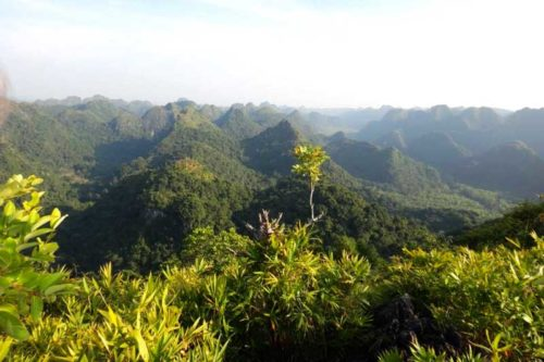 Cat Ba Island Trekking Tour