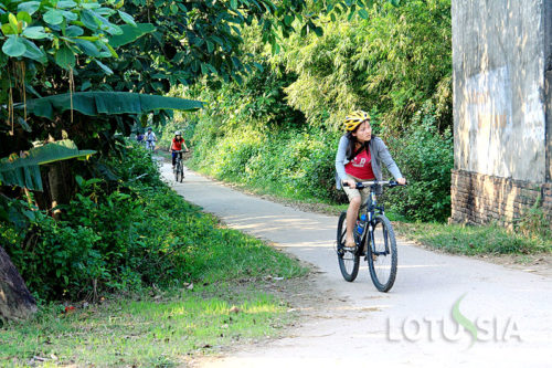 Budget 2 Day Cycling Mekong Delta Homestay