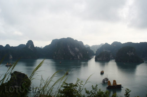 Halong Bay Kayaking and Rock Climbing Day Tour