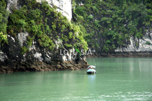 Halong Bay Kayaking Day Tour from Cat Ba
