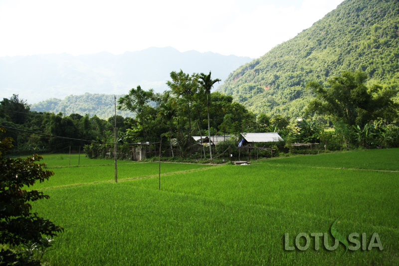 7 Day Tough Trek Mai Chau Vietnam