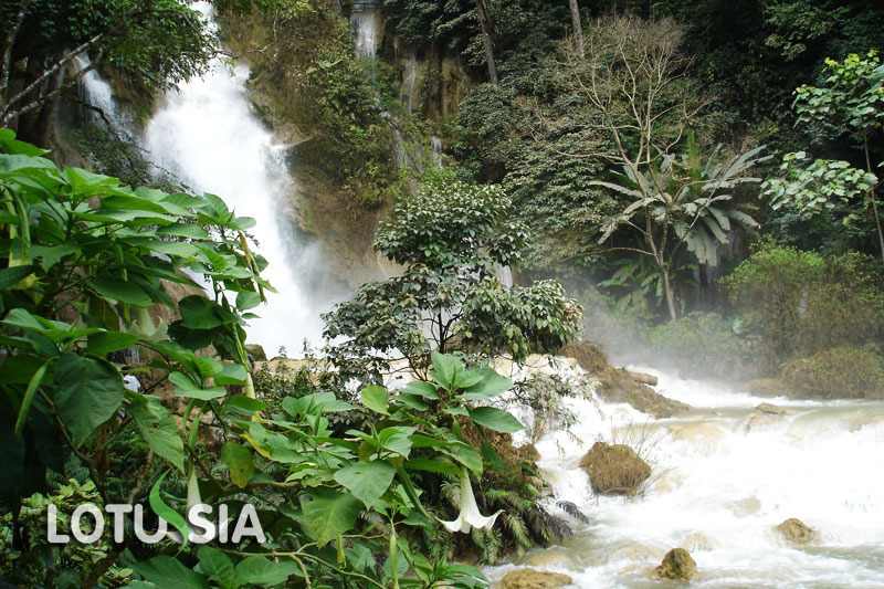 Kuang Si Waterfall Tour