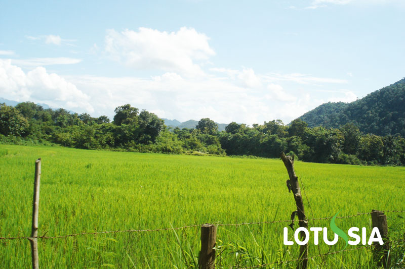 Laos 7 Days Tour