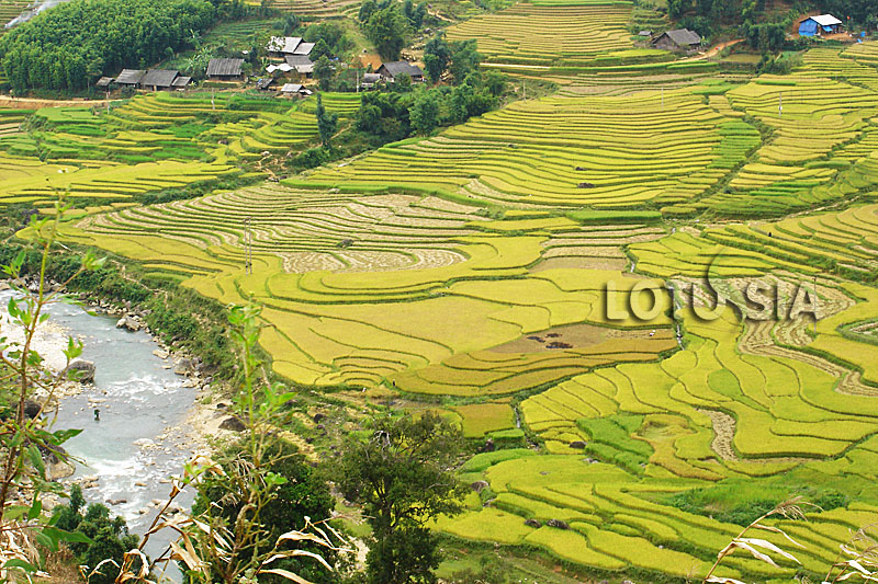4 Day Non-Touristy Sapa Trek Vietnam
