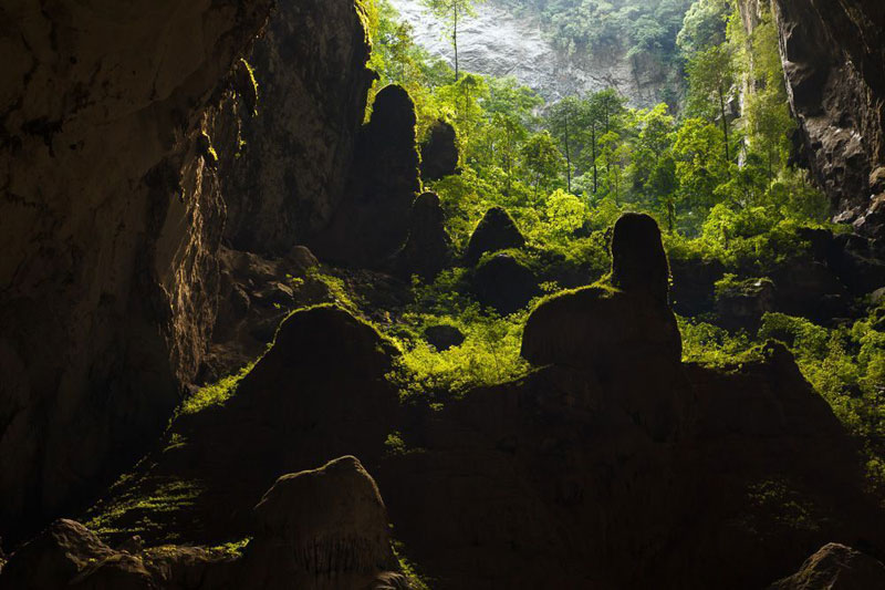 Son Doong Cave Tour