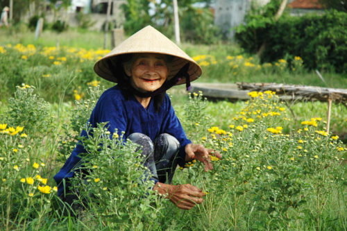 Hoi An Farm Tour