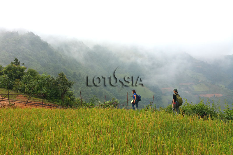 Best 8 Day Bac Ha Ha Giang Trekking Itinerary