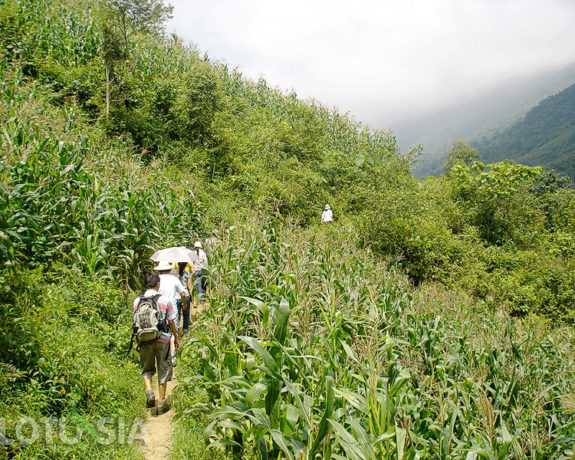 Best 5 Day Trekking Sapa Vietnam